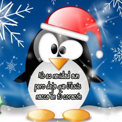 frases-cristianas-de-feliz-navidad-corazon