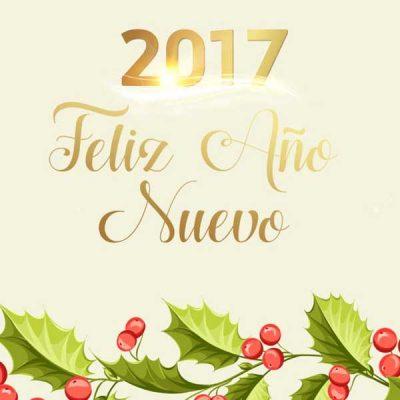 saludos de ano nuevo 2017 flores