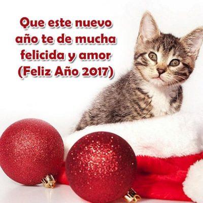 felicitaciones de ano nuevo mucha felicida