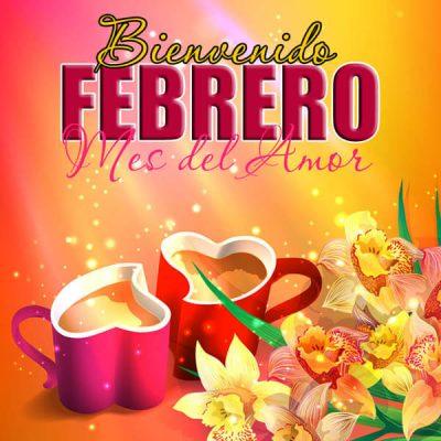 febrero mes del amor y la amistad corazones