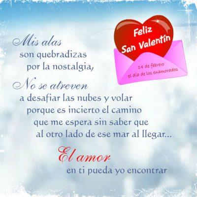 reflexiones para el 14 de febrero el amor