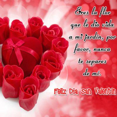 tarjeta gratis de san valentin eres la flor que le dio vida a mi jardin