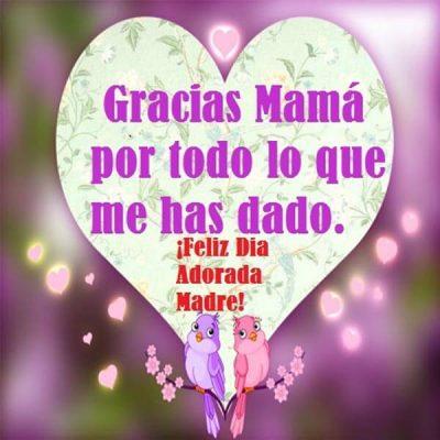 dedicatoria del dia de la madre gracias por todo