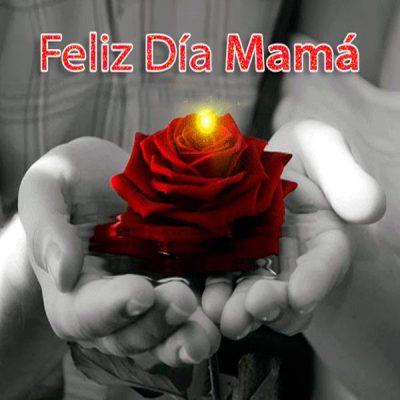 dia de las madres mensajes felicidades