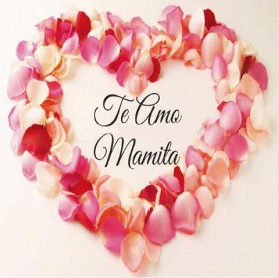 frases para felicitar a las madres rosas para ti