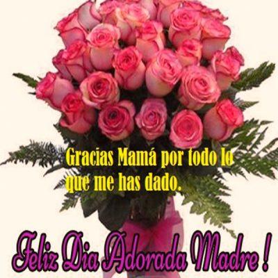postales del dia de la madre gratis adorada mama
