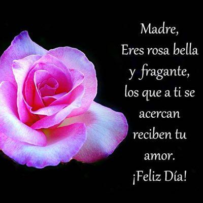 postales del dia de la madre gratis rosa bella